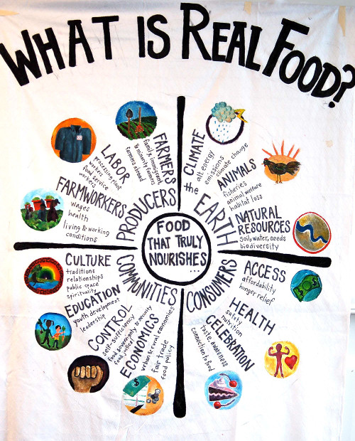 Figure 10. What is Real Food? http://agbizcenter.org/blog/wp-content/uploads/2012/10/Real-Food-Wheel.jpg