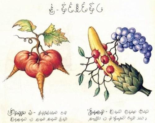 """Fig. 3: Serafinian """"GMOs"""""""