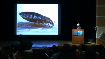 """Figure 5. Entomologist Lou Sorkin gives a lecture – """"What do you really know about bed bugs?"""" – at the American Natural History Museum in New York City. © Jamie Berthe (2010)"""