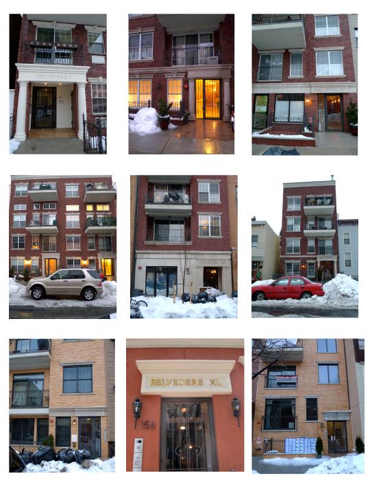 Figure 9. Belvederes I, X, XII, XVI and XVIII, XX, XXVIII, XXXVIII, XL, XLIV,Greenpoint, Brooklyn (photographs by the author, 2011).