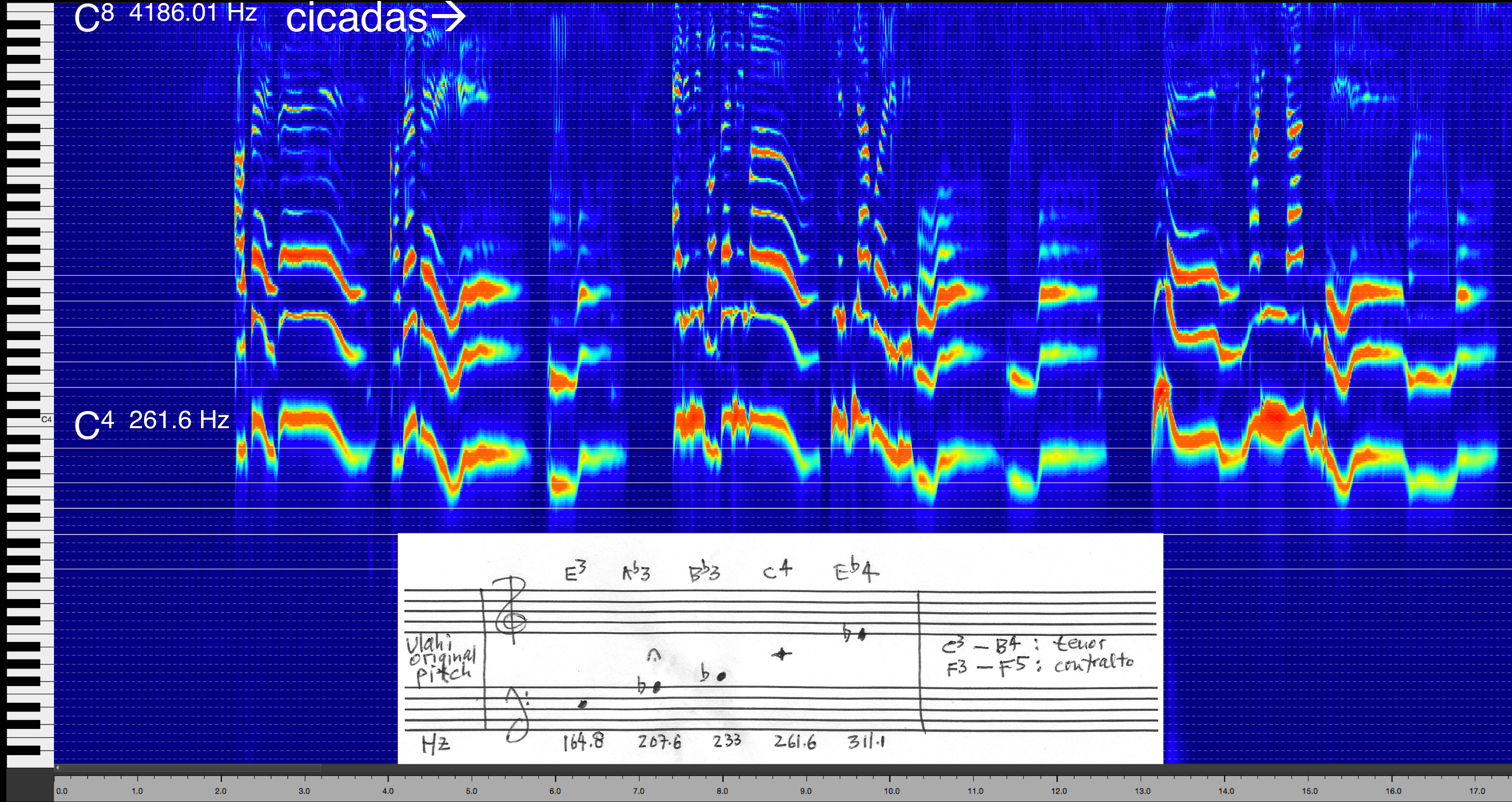 Figure 4. Spectrogram of Ulahi's song, alongside piano roll and music notation of her original pitches