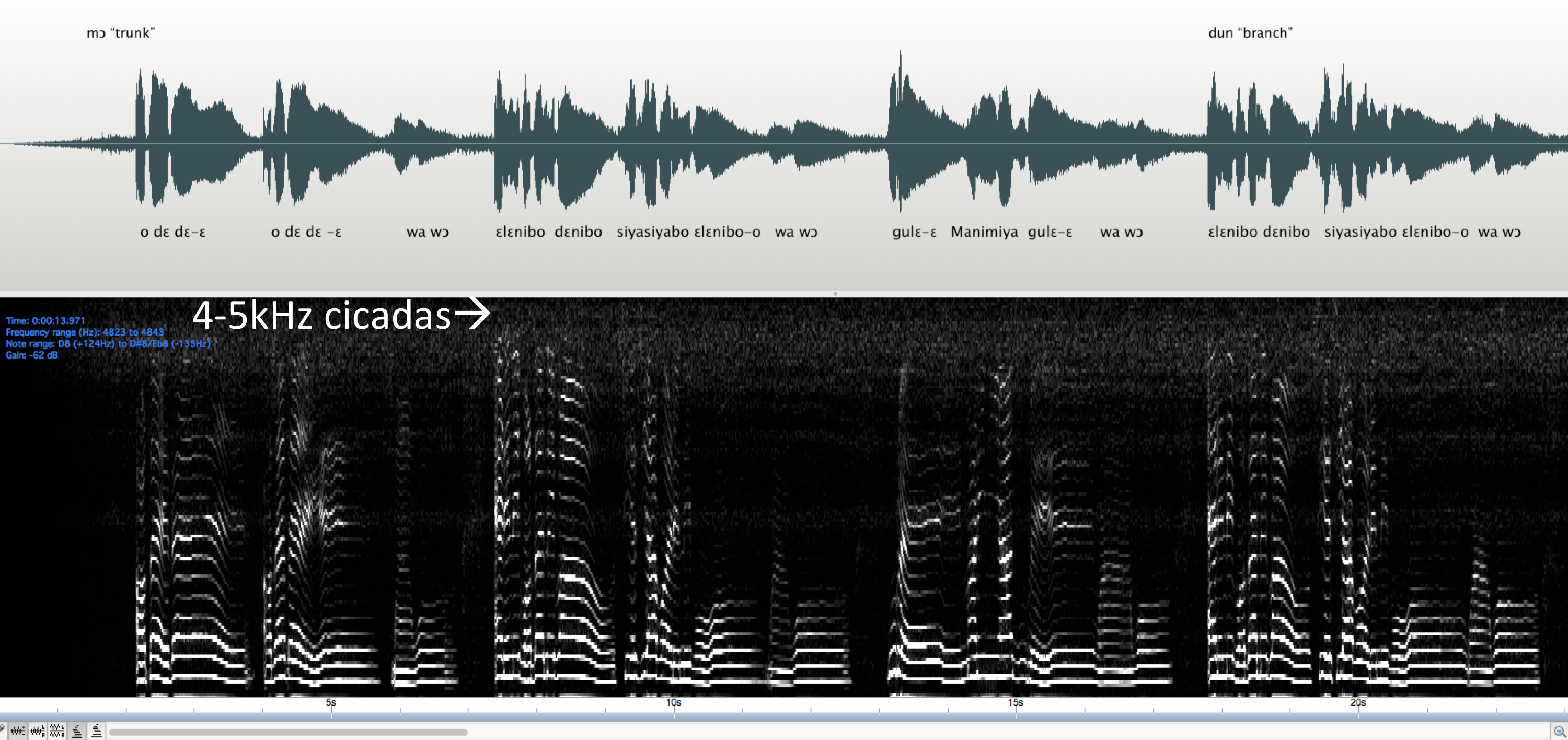 Figure 5: Wave form, linguistic form, and spectrogram of cicadas and Ulahi's voice in intermedial resonance.