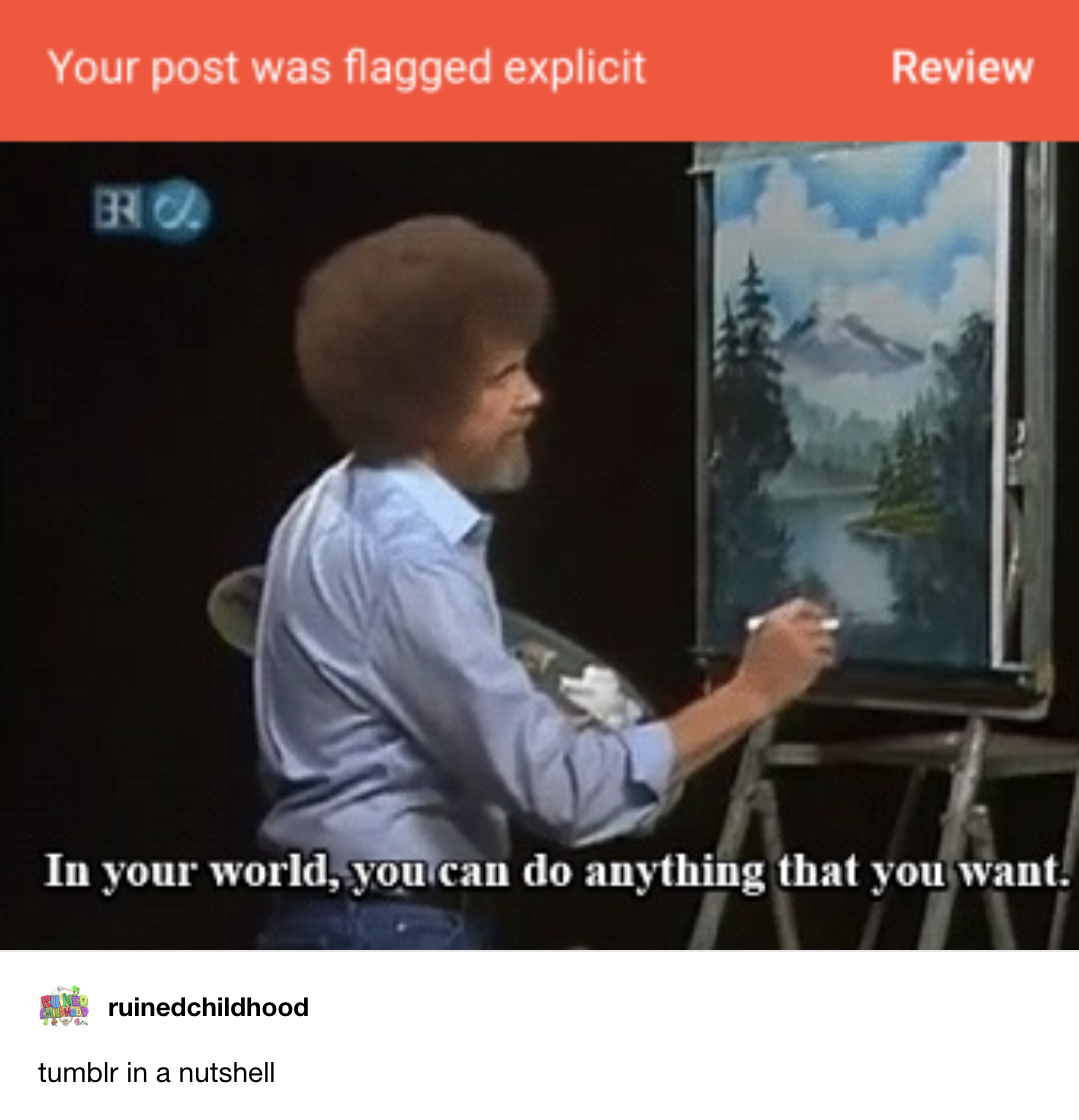 """Figure 6. Post-December 17th, 2018 posts (6a and 6b) captioning """"Tumblr in a nutshell"""""""