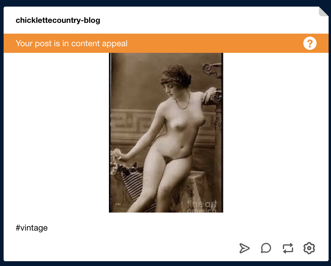Figure 8. Content appeal on Tumblr: (8a) Original image posted; (8b) Image flagged; (8c) Tumblr's response; (8d) Tumblr's decision