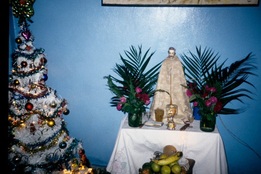 A plaster statue of San Lázaro atop a living room altar-table has been has been dressed up and adorned with fresh offerings for the Day of San Lazaro, which is December 17. An artificial Christmas tree has been set up next to the altar to mark the upcoming Christmas holiday. Santiago de Cuba, December 1999. Photograph by author.